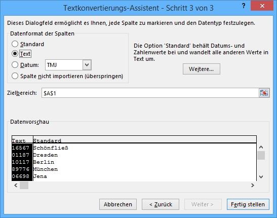 Excel-Funktionen: Text in Spalten Schritt 3